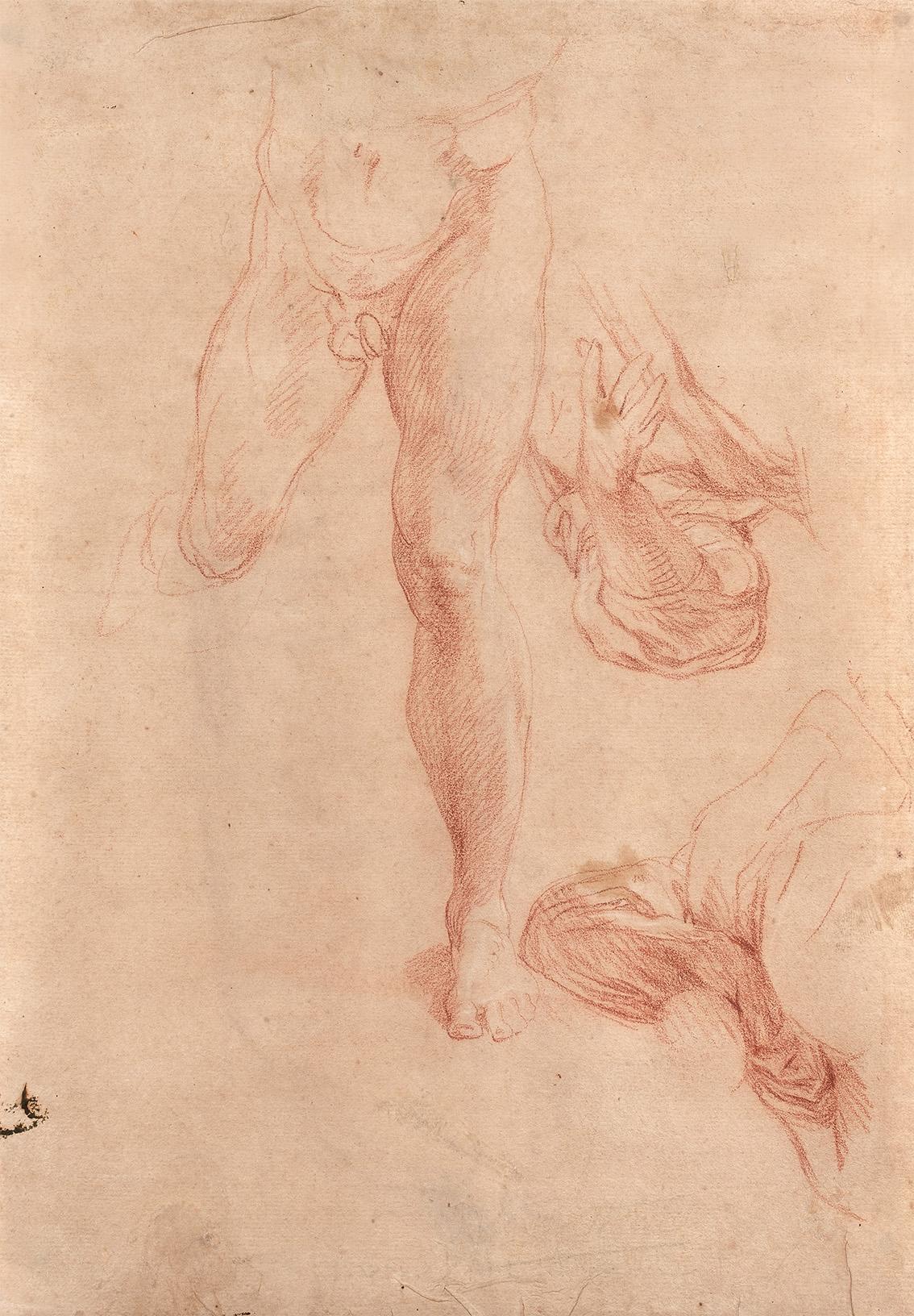 Étude de jambes et études de bras, préparatoires à La Chute de Simon le Magicien (recto)  Étude de draperie, préparatoire au Choix d'Hercule (verso)